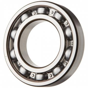 High Quality Double Sealed 6319-2rsr-C3 Deep Groove Ball Bearing Made in Germany