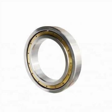 ZZ 2RS Seal 6004 6005 6006 Mini Nsk Bearing Large Stock Deep Groove Ball Bearing Original NSK
