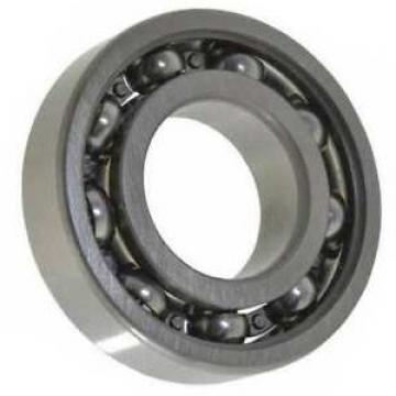 SKF Cylindrical Roller Bearing Rich Stock High P