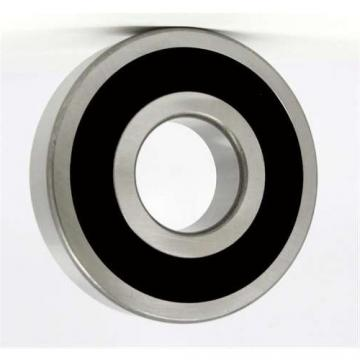 China 2mm 5.5 mm 15mm 16mm 17mm 18mm stainless steel bearing ball for bearing