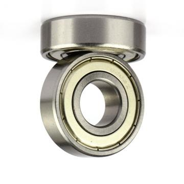 Ceramic Bearing Anti - High Temperatures And Corrosive Alumina Ceramic Roller Bearings