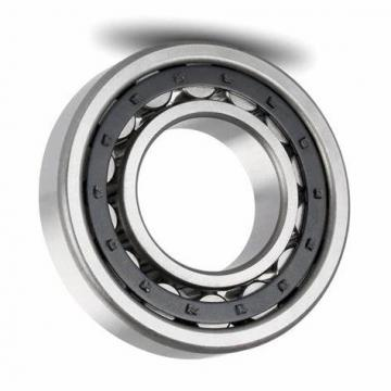 High temperature Bearing 6002 PEEK Plastic Bearing Deep Groove Ball Bearing