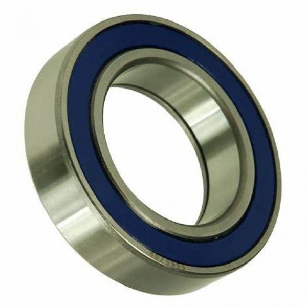 One Way Original Germany Cylindrical Roller Bearing N NU NJ NUP 202 203 2203 303 204 2204 304 ECP Bearing With High Quality #1 image